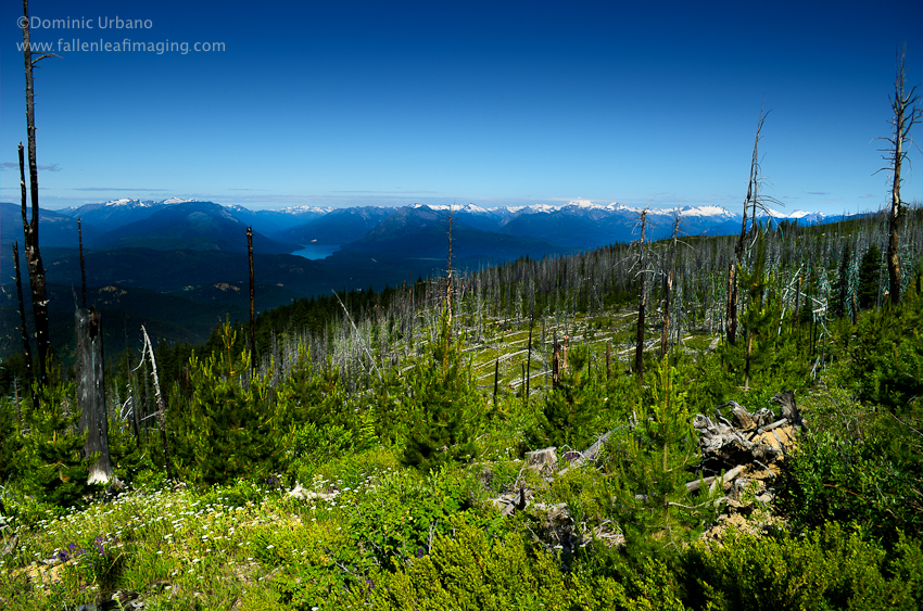 Sugarloaf fire look out view from Entiat ridge