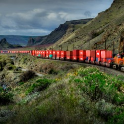 A BNSF train snakes through the picturesque Columbia Gorge.