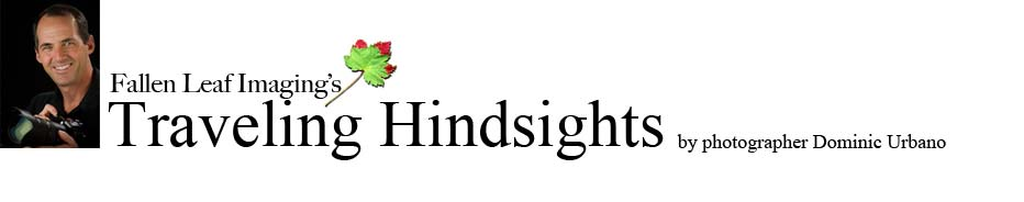 Traveling Hindsights - by Dominic Urbano