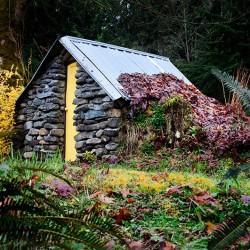 root-cellar-stone