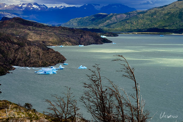See blue iceburgs on Grey lake while hiking the W.