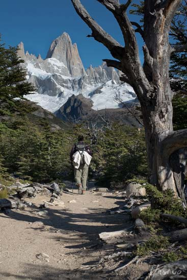 mirador-fitz-roy-trail